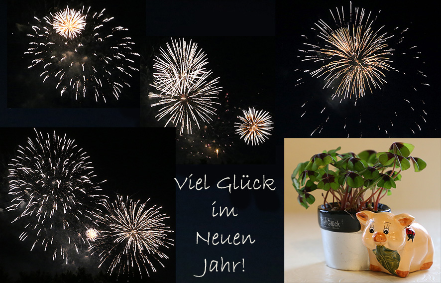 Neujahrsgrüße Saarinfos 2018