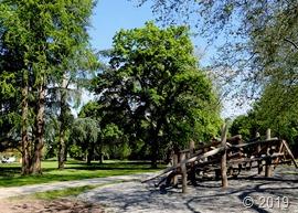 Der neugestaltete Merziger Stadtpark