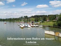 Informationen Blaualgen Stausee Losheim - Beitragsbild