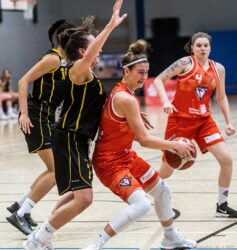 SG Diamonds - Ladies Ludwigsburg