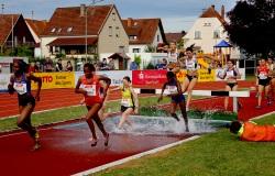 Pfingstsportfest-Rehlingen-2019-6363
